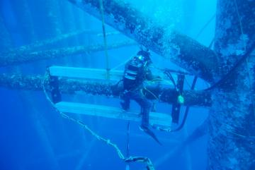 Cận Cảnh Hàn Dưới Biển